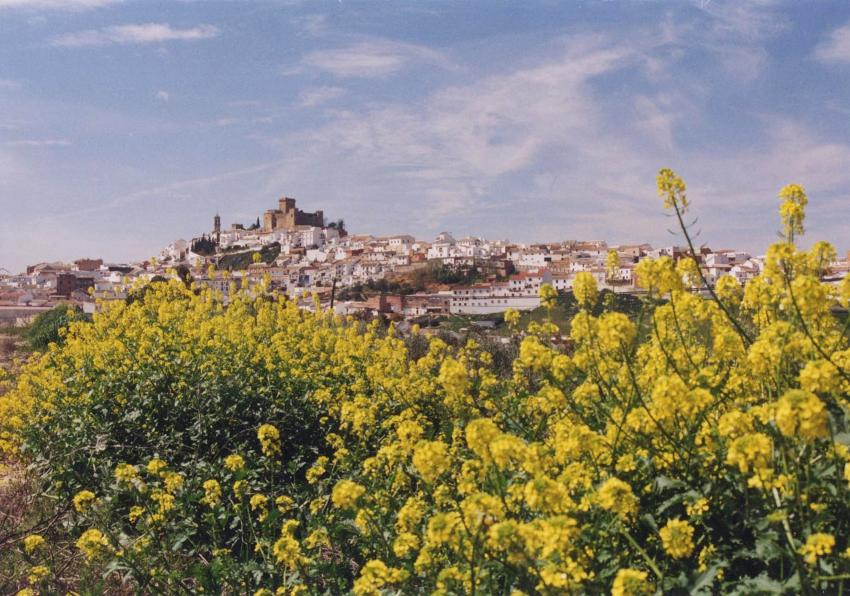 A meadow below a hilltop village in Spain